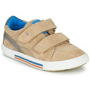 Xαμηλά Sneakers Catimini PERRUCHE ΣΤΕΛΕΧΟΣ: Δέρμα και συνθετικό & ΕΠΕΝΔΥΣΗ: Δέρμα & ΕΣ. ΣΟΛΑ: Δέρμα & ΕΞ. ΣΟΛΑ: Καουτσούκ