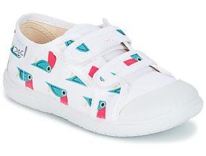 Xαμηλά Sneakers Citrouille et Compagnie GLASSIA ΣΤΕΛΕΧΟΣ: Ύφασμα & ΕΠΕΝΔΥΣΗ: Ύφασμα & ΕΣ. ΣΟΛΑ: Ύφασμα & ΕΞ. ΣΟΛΑ: Καουτσούκ